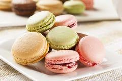 Gourmet Colored Macaroon Cookies Stock Photos