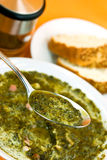 Gourmet Cream Soup With Green Cabbage And Slices O Stock Photography