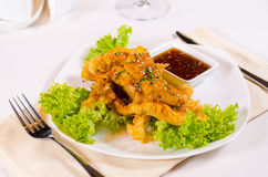 Gourmet Crispy Fry Chicken with Chili Sauce Royalty Free Stock Images