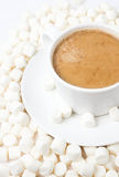 Gourmet cup of hot cocoa with mini marshmallows resting on backg Stock Photo