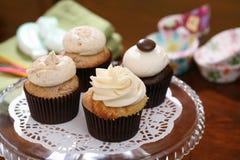Gourmet cupcakes Stock Photos