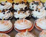 Gourmet Cupcakes in Bakery. Variety of Gourmet Cupcakes in Elegant Bakery Stock Photos