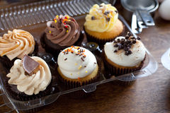 Gourmet Cupcakes in Package Stock Photos