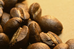 Gourmet Delicious coffee beans Royalty Free Stock Photo