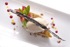 Gourmet dessert. Delicious cake with ice cream and vanilla bean on it Stock Photography