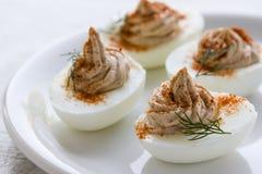 gourmet- deviled ägg Royaltyfri Fotografi