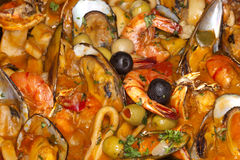 Gourmet Dining: Shrimp, Squid and Mussels Stock Images