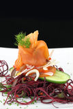 Gourmet dish Stock Images