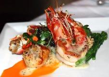 Gourmet Dish Stock Photos