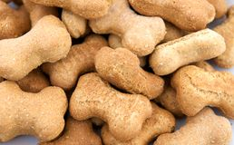 Gourmet Dog Biscuits Stock Photo