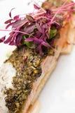 Gourmet Fish Food Stock Photos