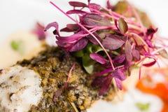 Gourmet Fish Food Stock Photography
