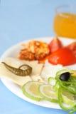 Gourmet food Royalty Free Stock Photo