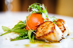Gourmet food scallops. Haute cuisine, Gourmet food scallops with vegetables and salad stock photos