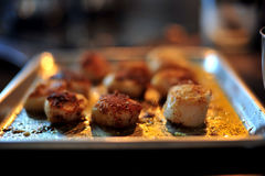 Gourmet French Dinner Stock Image