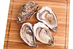 Gourmet fresh french oysters Royalty Free Stock Photos