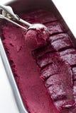 Gourmet- gelato Arkivfoton