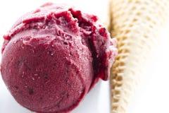 Gourmet gelato Stock Images