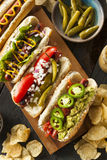 Gourmet Grilled All Beef Hots Dogs Royalty Free Stock Photos