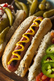 Gourmet Grilled All Beef Hots Dogs. With Sides and Chips Stock Photography