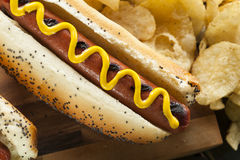 Gourmet Grilled All Beef Hots Dogs. With Sides and Chips Stock Photo