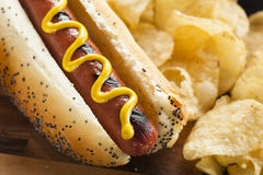 Gourmet Grilled All Beef Hots Dogs. With Sides and Chips Royalty Free Stock Image