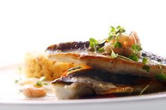 Gourmet grilled fish served with prawns Royalty Free Stock Photography