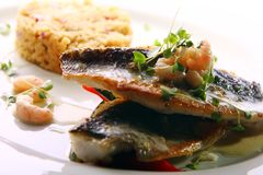 Gourmet grilled fish served with prawns Royalty Free Stock Image