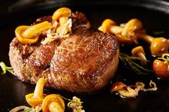 Gourmet wild venison steak with mushrooms. Gourmet grilled wild venison steak with mushrooms, herbs and onion in a close up low angle view suitable for menu royalty free stock image