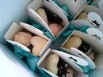 Gourmet handmade chocolates stock photography