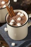 Gourmet Hot Chocolate Milk Stock Photography