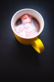 Gourmet Hot Chocolate Milk and marshmellows Stock Photos