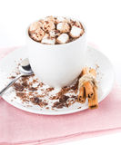 Gourmet Hot chocolate with mini marshmallow  and cinnamon in a w Stock Images