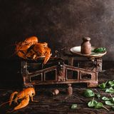 Gourmet lobsters on vintage scales and basil leaves on rustic wooden table. Close-up view of gourmet lobsters on vintage scales and basil leaves on rustic wooden Royalty Free Stock Image