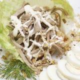 gourmet- meatsallad för mat Fotografering för Bildbyråer