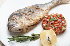 Gourmet Mediterranean seafood dish. Grilled fish gilthead with v Royalty Free Stock Images