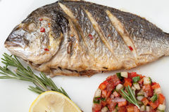Gourmet Mediterranean seafood dish. Grilled fish gilthead with v Royalty Free Stock Photography