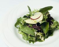 Gourmet Mesclun Salad. This gourmet salad consists of mesclun and thinly sliced apples as a garnish Stock Photography
