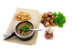Gourmet Mushrooms cream soup Royalty Free Stock Images