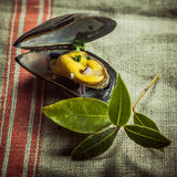 Gourmet Mussel Dish on Table Cloth with Leaves Royalty Free Stock Photography