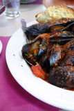 Gourmet mussels served with fresh herbs for a tasty seafood meal Stock Photography