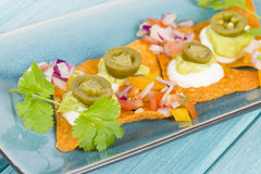 Gourmet Nachos Royalty Free Stock Photo
