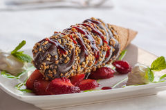 Gourmet nutty buddy. On plate stock photography