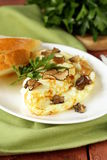 Gourmet omelette with black truffle Stock Image