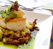 Gourmet Pacific Halibut Stock Images