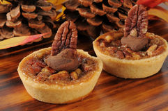 Gourmet pecan pie dessert tarts Stock Photos
