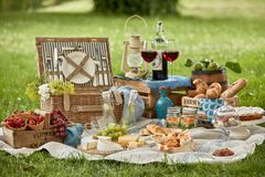 Gourmet picnic lunch for two in a lush green park Royalty Free Stock Photography
