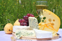 Gourmet plate (cheese and wine) Royalty Free Stock Images