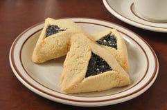 Gourmet poppyseed cookies Stock Image