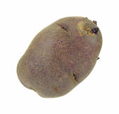 Gourmet purple potato Stock Photography